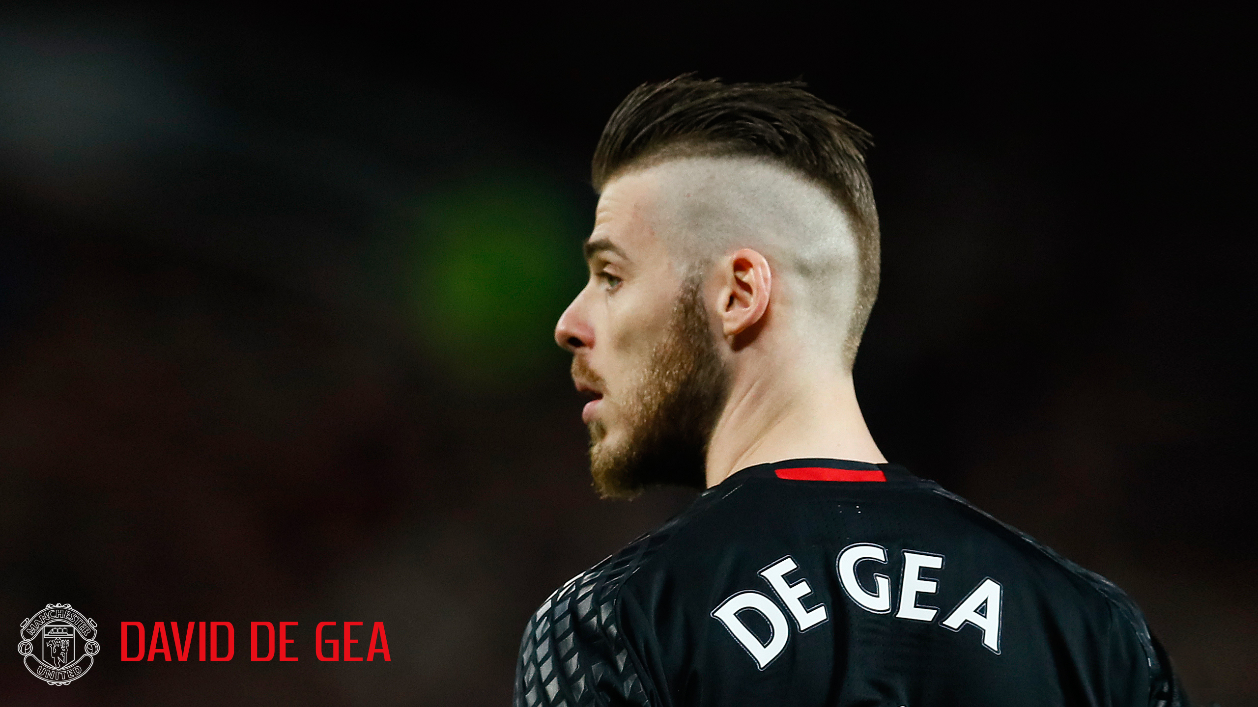 David de Gea Manchester United Close Up for Wallpaper