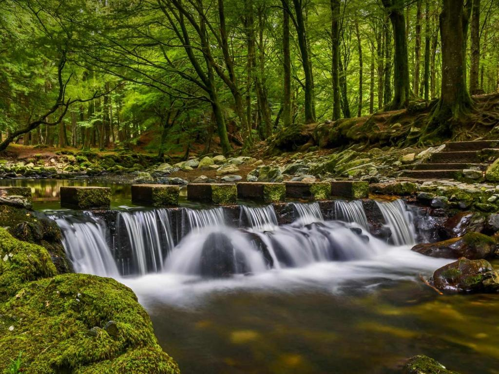 Natural Images Hd 1080p Download With Waterfall In