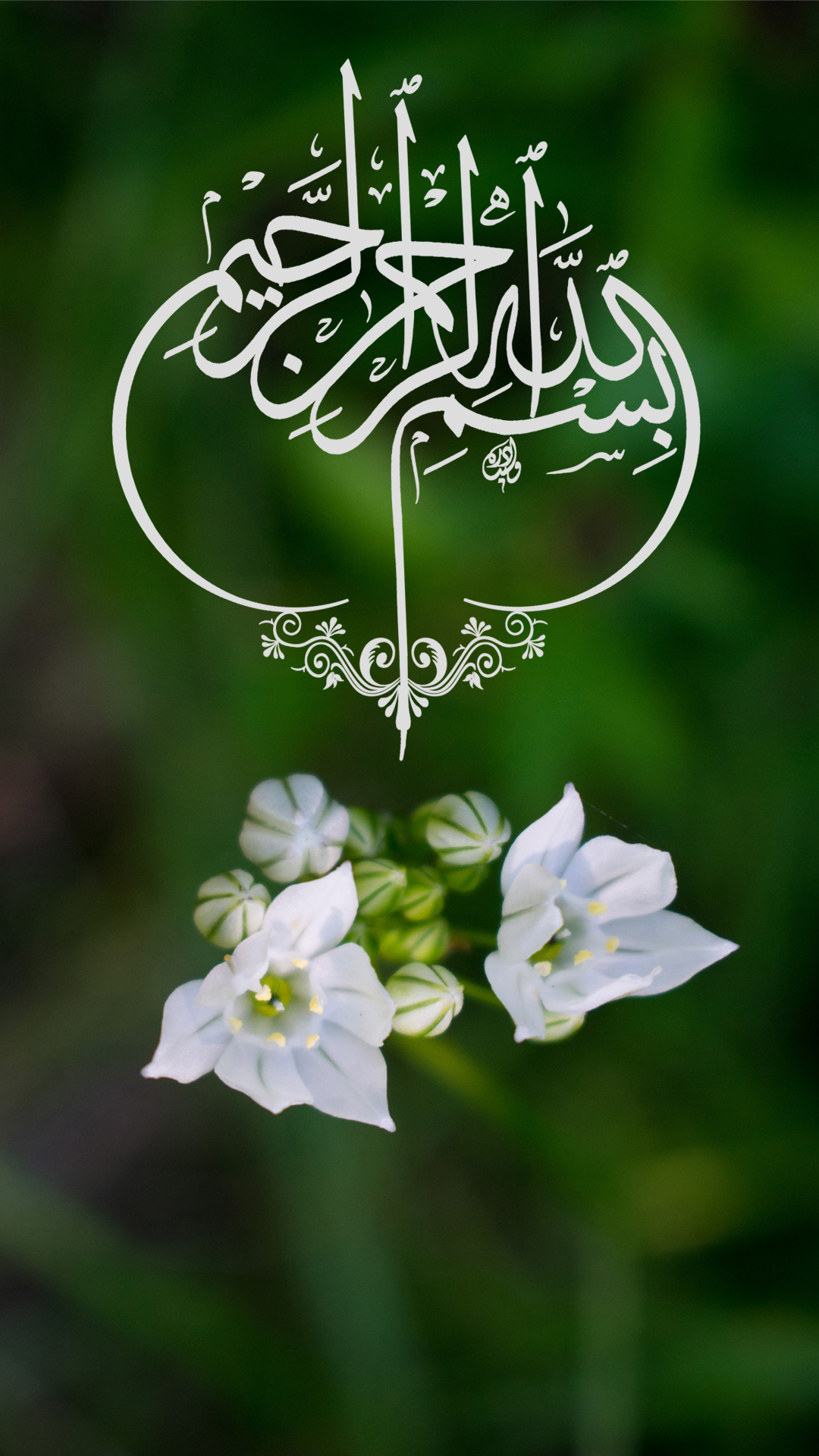 Phone Nature Wallpapers as Islamic Wallpaper for Mobile HD with ...
