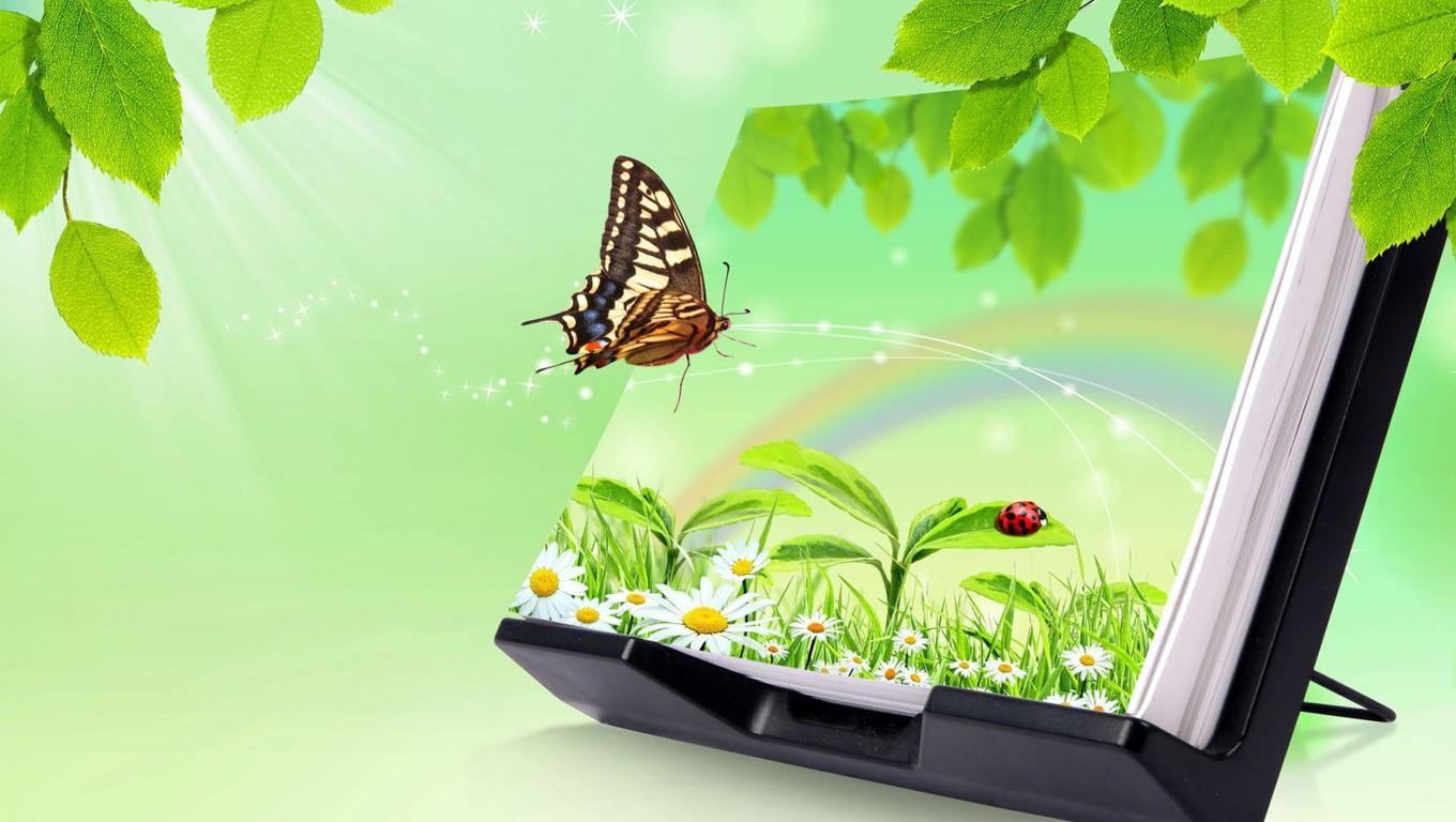 3d images of nature for desktop background with butterfly - Background pictures of nature for desktop ...