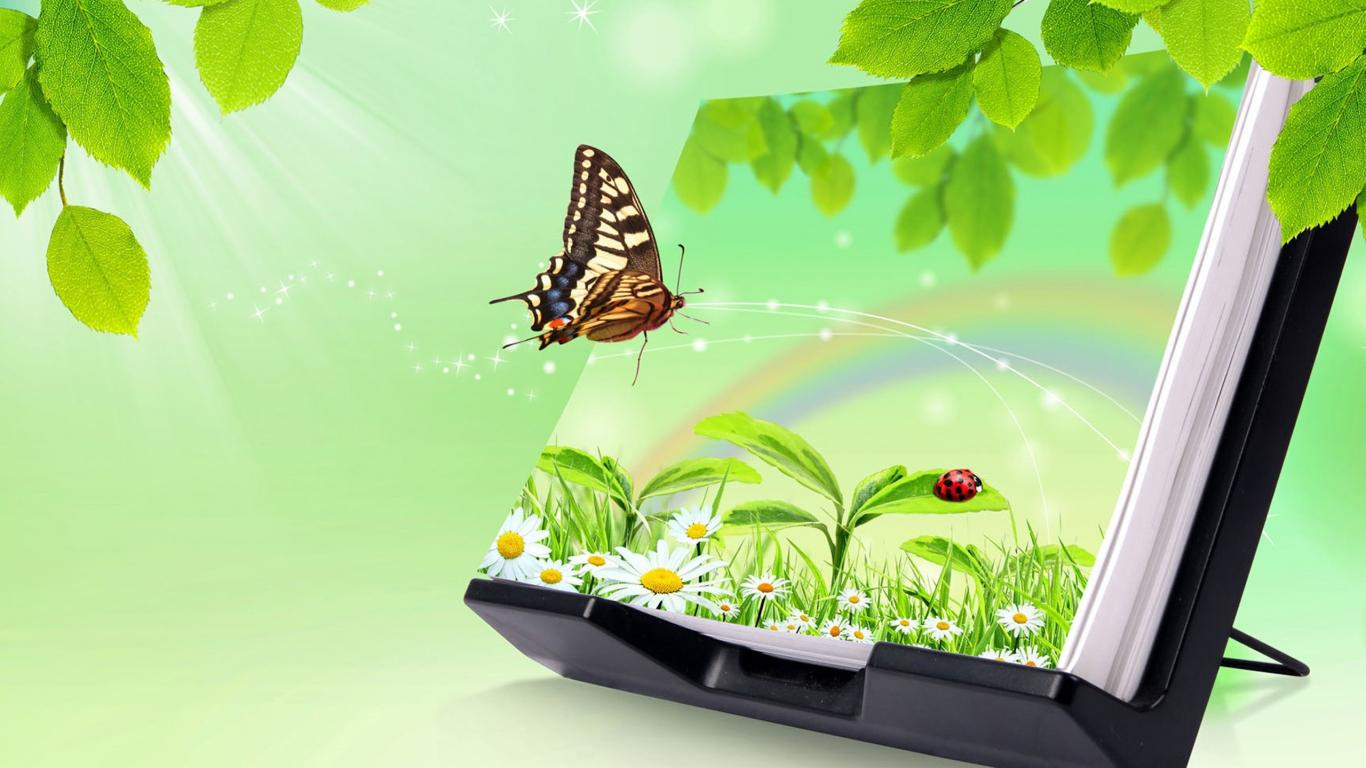 3d Images Of Nature For Desktop Background With Butterfly