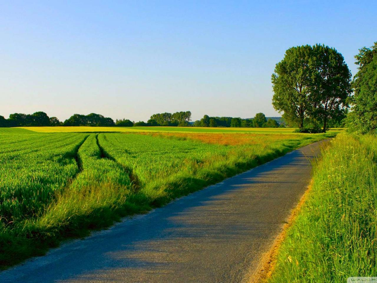 Natural Image In HD With Picture Of Road In Village