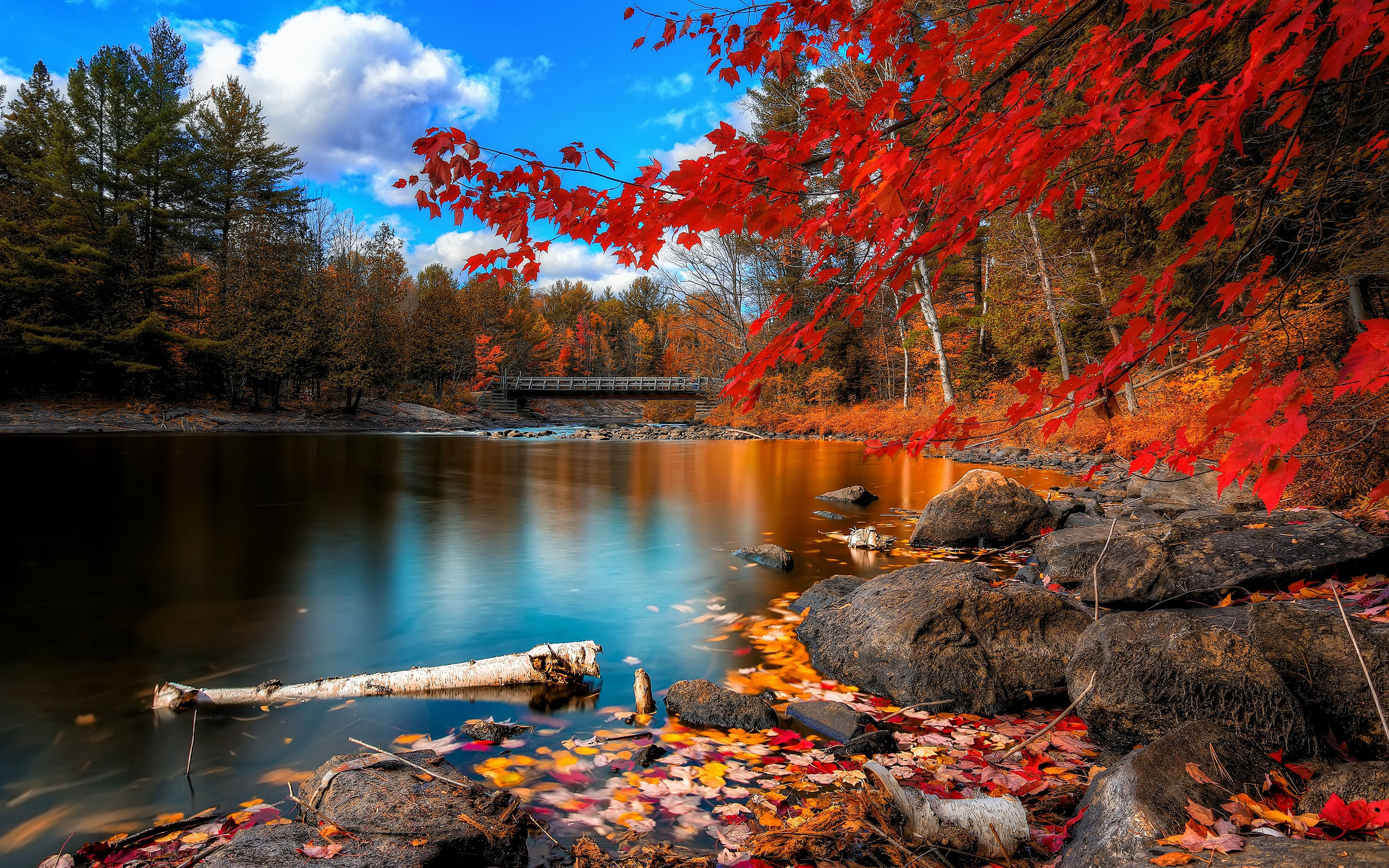 macbook pro wallpaper with autumn forest and river in 2880x1800 - hd