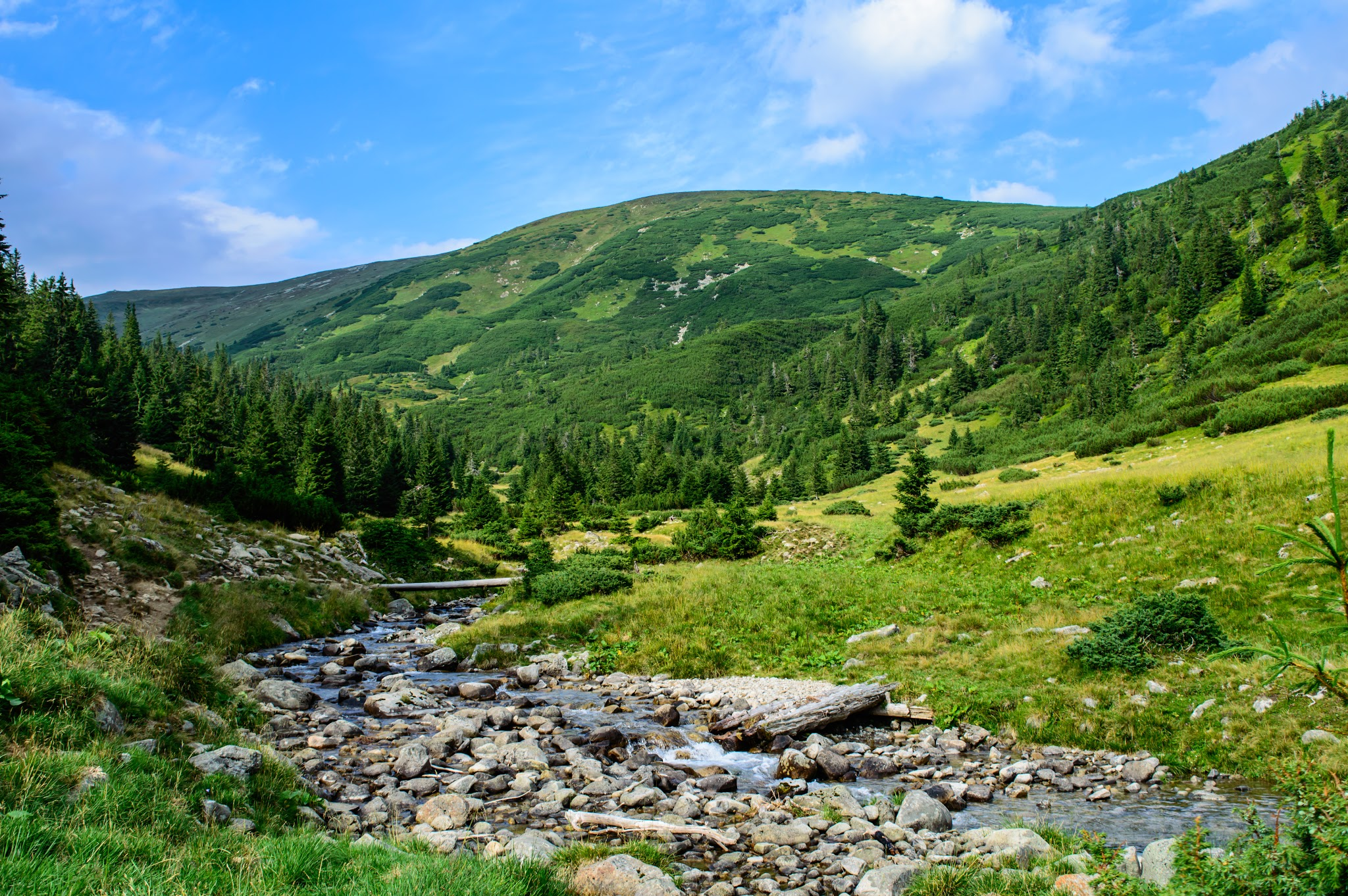 Nature wallpaper with green hill and river for desktop for River hill