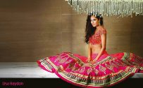 Lisa Haydon Photo with Saree for Wallpaper