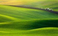 Beautiful landscape photography with Moravia green field
