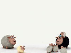 Attachment for 37 Cute Stuff Wallpapers - OwdLarrd Funny Sheep Cartoon