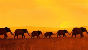 Attachment file for Computer Backgrounds 5 of 18 - Herd of Elephants