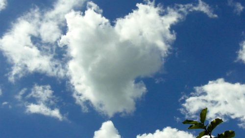 File to download for Heart Shaped Cloud 10 of 57 - Live Capture Love Shaped Cloud