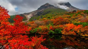 Nature Images HD with picture of Autumn in Nasudake Japan