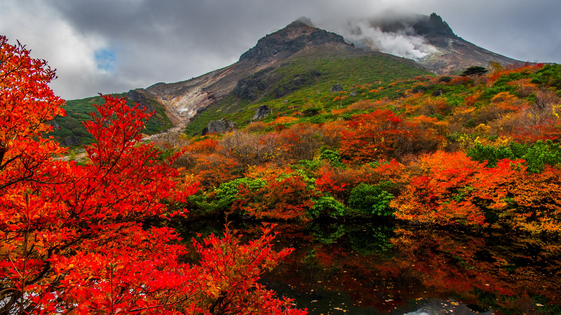 Nature images hd autumn in nasudake japan hd - Nature japan wallpaper ...