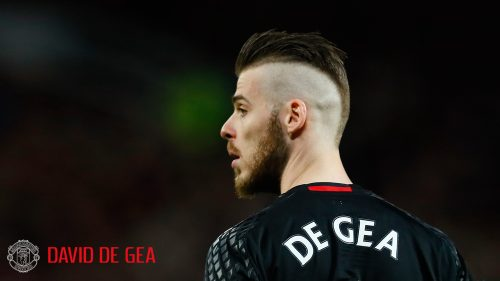 David de Gea Manchester United wallpaper - A Goal Keeper for 2017-2018 Squad
