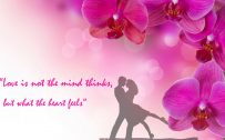 Love quotes with pink orchid flower