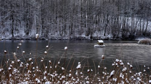 Snowy Lakeside picture for HD nature wallpaper