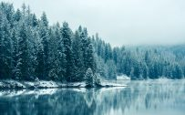 HD Winter Wallpaper with Reflecting Forest on River