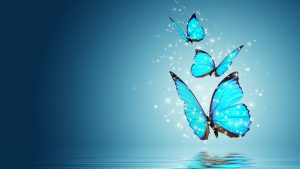 Free download of fantasy butterfly wallpaper 02 of 10 - Blue Morpho on Water