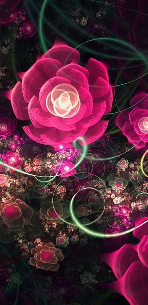 Samsung Galaxy S8 Wallpaper Download with Animated Rose Flower