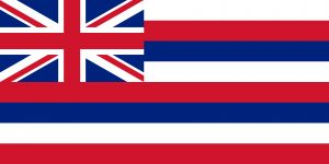 State Flags of The United States of America with Hawaiian State Flag