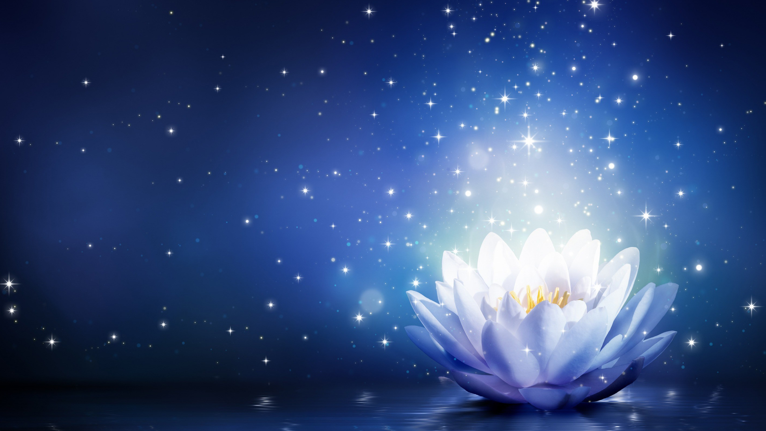 Animated white lotus flower with blue background hd wallpapers after publishing an animated picture of lotus flower for yoga symbol here is another lotus flower which designed in blue background mightylinksfo