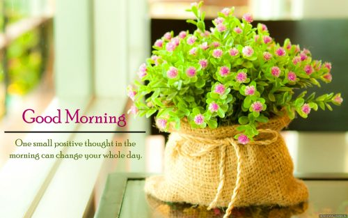 Image file for Inspiring Pictures of Purple Flower with Quotes for Good Morning Wallpaper