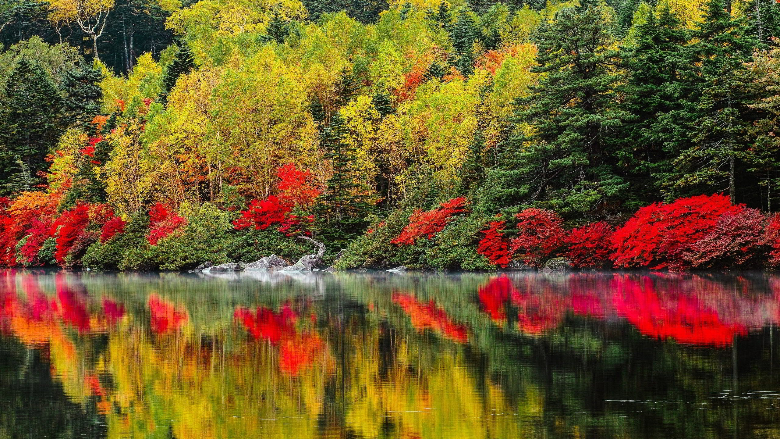 High resolution fall pictures with colorful nature trees - Colorful nature pics ...