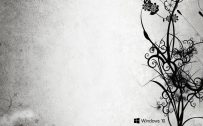 Windows 10 Wallpaper Black And White Abstract Floral