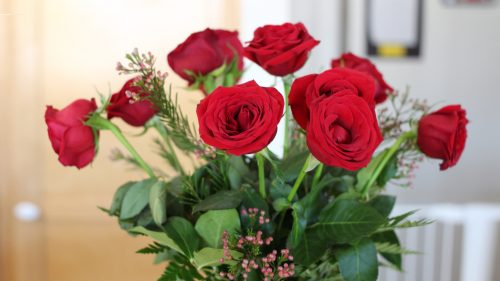 Pictures of 12 Red Roses as Bouquet Flower