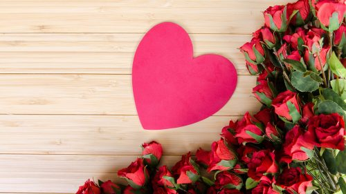 Romantic Wallpapers with Pictures of Red Roses flower
