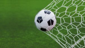 Picture of Soccer Ball Goal in Net