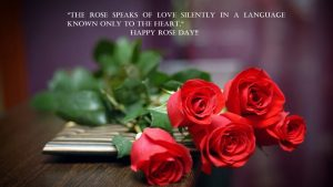 Top 25 Pictures Of Red Roses - #06 - for Girlfriend