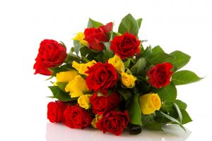 Top 25 Pictures Of Red Roses - #08 - Yellow Roses