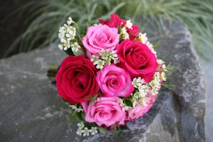 Top 25 Pictures Of Red Roses - #09 - Pink Roses