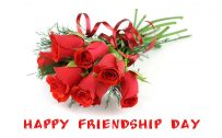 Top 25 Pictures Of Red Roses - #12 - for Friendship