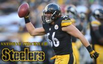 Pittsburgh Steelers Player Wallpaper – Anthony Chickillo (26 of 37 Pics)