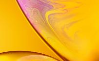 Download Original Apple iPhone XR Wallpaper - 02 - Yellow
