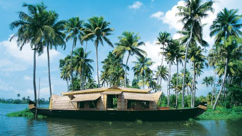 Picture of Kerala Backwater India