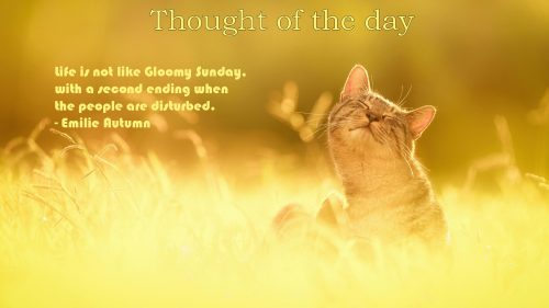 Thought of the day in English with images - Sunday