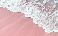 Beach Wallpaper for iPhone 7 - 09 - Pink Sand Beach