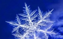 10 Perfect Blue Wallpapers for Nokia 8.3 5G - #03 - Snowflake