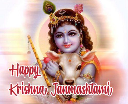 Krishna Janmashtami Wallpaper for Greeting Card Design