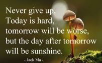 20 Best Thursday Thought Wallpapers as Motivational Quotes 04 - Never give up