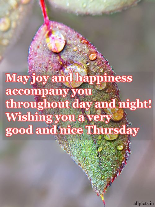 20 Best Thursday Thought Wallpapers as Motivational Quotes 07 - May joy and happiness accompany you