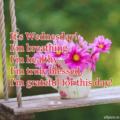 20 Best Wednesday Thought Quotes for Work 09 - I'm grateful for this day