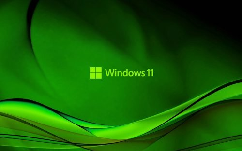 Abstract Wave in Green for Windows 11 Background
