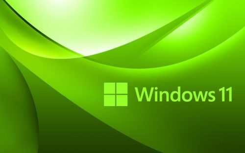 White Green Abstract Wallpaper for Windows 11 Desktop Background